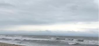 Alessia Marcuzzi condivide un video direttamente dall'Isola dei Famosi 2017